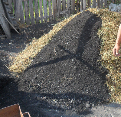 How to Make your own charcoal 3