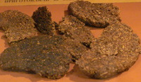 Breads out of orache and bran, fried on machine oil, as found at the siege of Leningrad