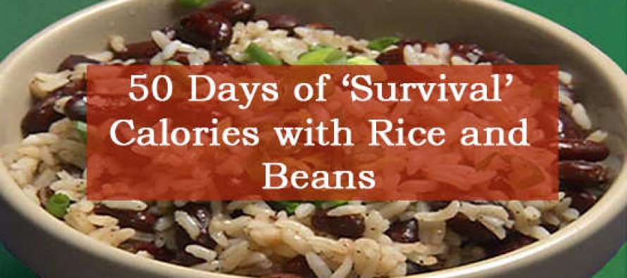50 Days Of Survival Calories With Rice And Beans Ask A