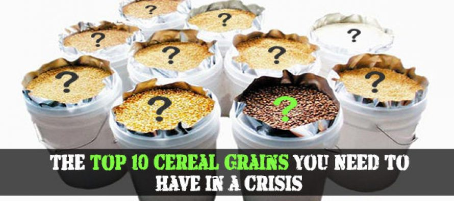 The Top 10 Cereal Grains You Need To Have in a Crisis