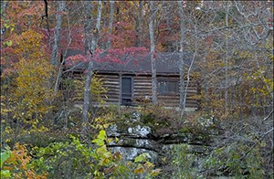 Ozark_fall_foliage_under