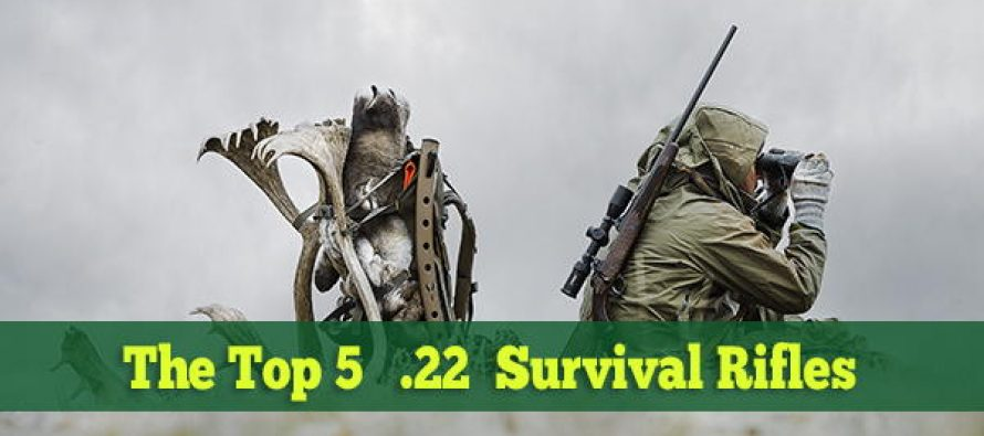 The Top 5 .22 LR Survival Rifles