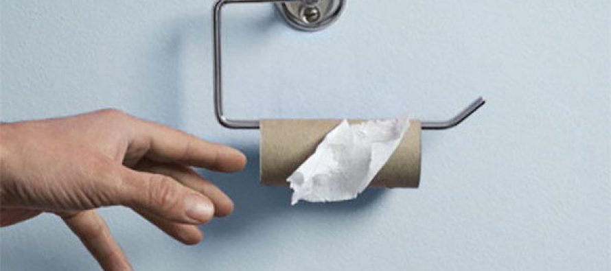 Homemade Substitutes for Toilet Paper - Ask a Prepper