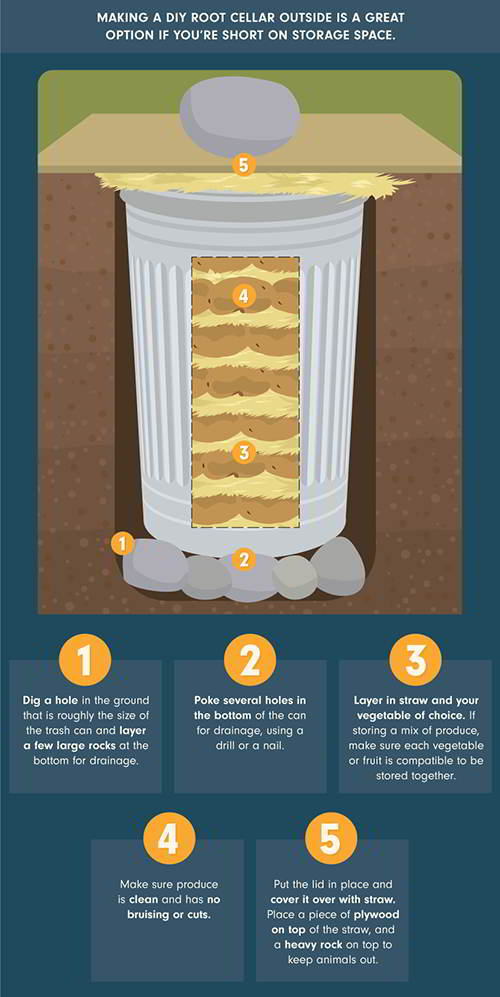 diy-mini-root-cellar-infografic