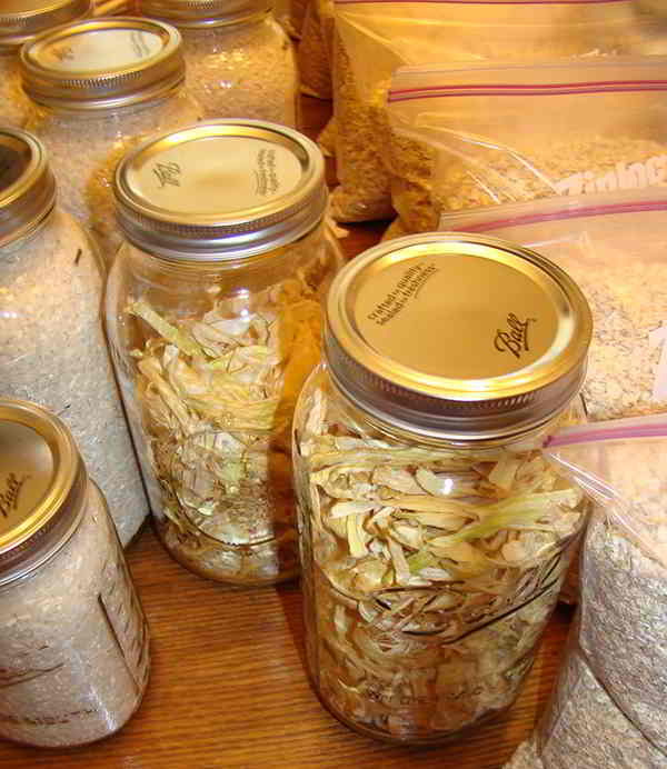 Buying Food in Bulk and Some Storage Ideas Grains