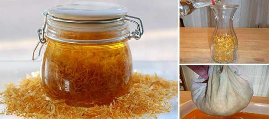How To Make a Powerful Calendula Extract to Keep in Your Medicine Cabinet (with pictures)