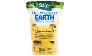 18 Reasons to Stock Diatomaceous Earth for Survival 4