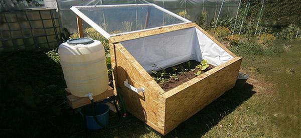 Diy Mini Greenhouse For Year Round Vegetables Ask A Prepper