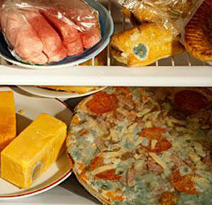 Should You Throw It Out These Moldy Foods Are Still Edible