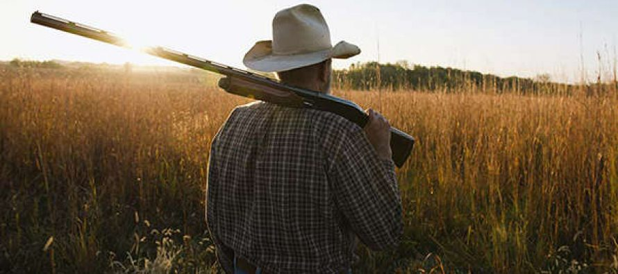 Homesteading After 60 What You Need To Know