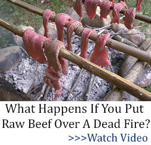 tlw banner What Happens If You Put Raw Meat Over A Dead Fire