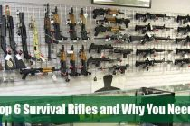 Top 6 Survival Rifles and Why You Need One