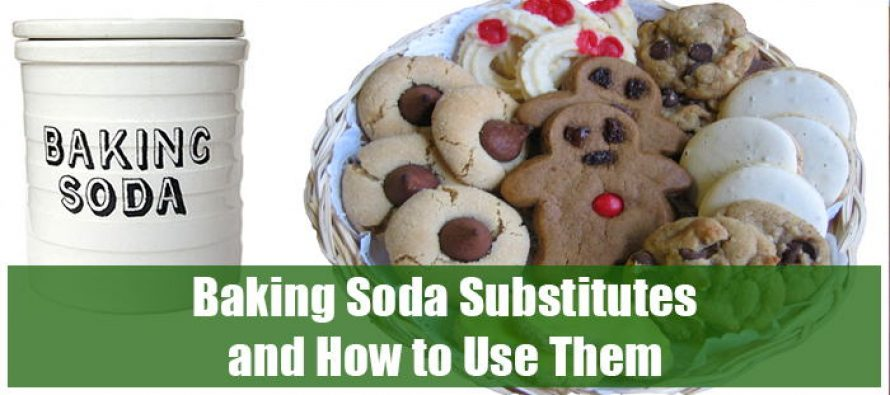 Baking Soda Substitutes and How to Use Them