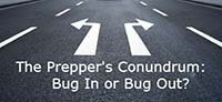 Emergency preparedness bug out or stay