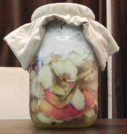 homemade vinegar mother