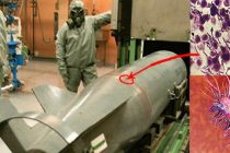 The Most Common Biological Weapons (and Antidotes)