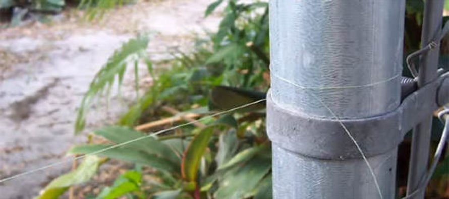 DIY TripWire Alarm Very Simple and Outrageously Loud (High Security Perimeter)