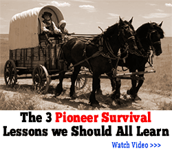 3 pioneer lessons banner png