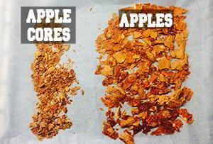 apple sugar dehydration
