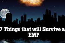 7 Things That Will Survive an EMP