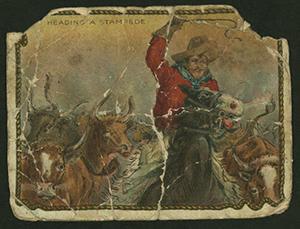 cowboy survival 7