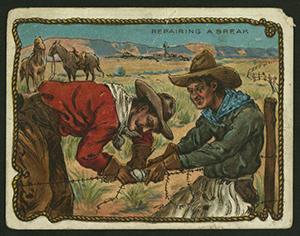 cowboy survival tips