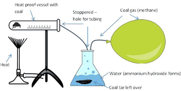 prepper experiment