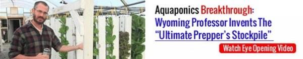 aquaponicsB