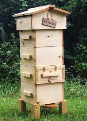 Vacancies How To Start A Beehive