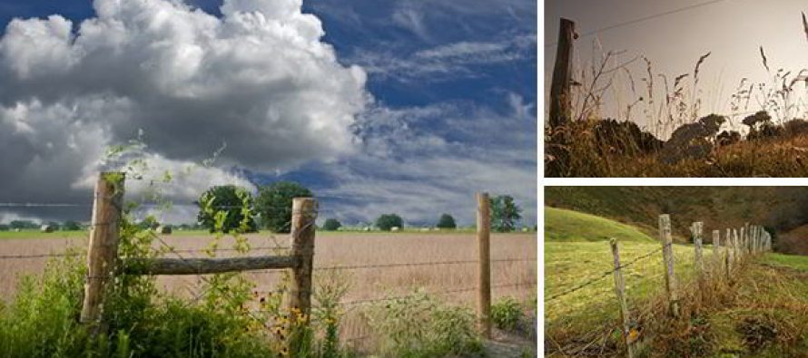 What Is the the Right Fence for Your Homestead?