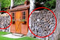 How to Store and Stack Firewood The Right Way