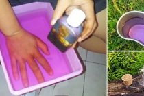Potassium Permanganate: Why You Need It in Your Survival Kit?