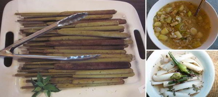 "Delicious Recipes Using Cattails – ""The Supermarket of the Swamp"""