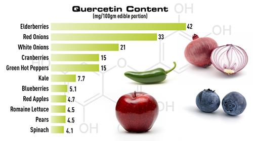 Quercetin-containing Foods