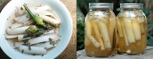 pickled cattails