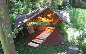 africa tarp