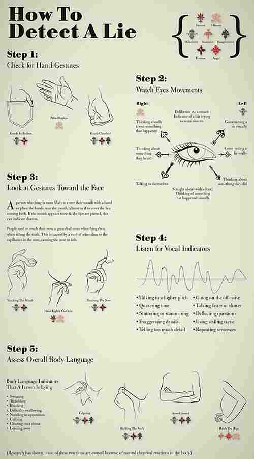 lie detection infographic