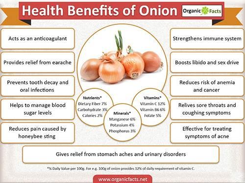 onioninfographic
