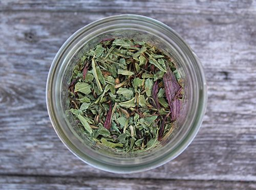 Dried Echinacea for Tincture