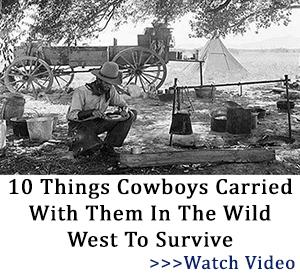 banner cowboys tlw 2