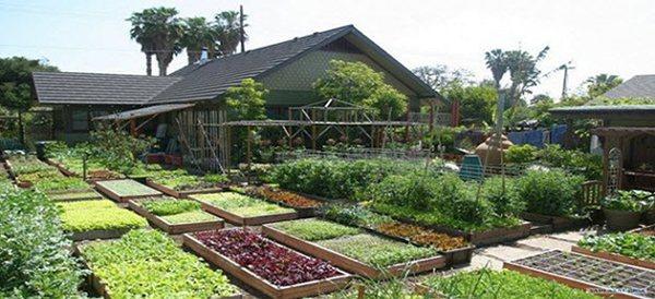 Mini Farming On 1 Acre Ask A Prepper
