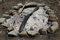 Never Throw Away Your Wood Ash! Do This Instead