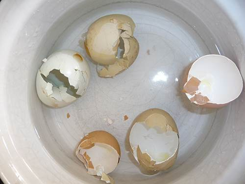 1 Calcium Supplements from Eggshells