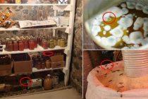 8 Food Storage Myths
