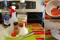 How To Make Pepper Spray