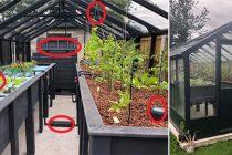How To Make A Year-Round Self-Sustaining Garden