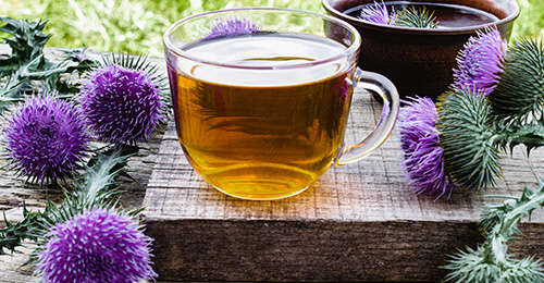 How To Use Milk Thistle For Inflammation