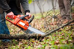 Chainsaw - 26 Necessary Tools for Off-Grid Living