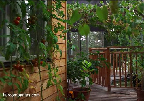 Couple Builds Greenhouse Around Home to Stay Warm and Grow Food All Year Long4