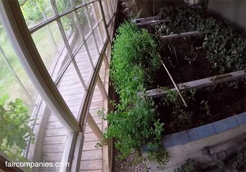 Couple Builds Greenhouse Around Home to Stay Warm and Grow Food All Year Long5
